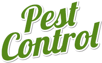 control,earth friendly pest control,Echo pest control,safe and effective pest control,all natural pesticide,Utah pest control,ogden pest control,Echo pest control,utah exterminator,south weber pest control,layton pest control,farr west pest control,harrisville pest control,north ogden pest control,west point pest control,bountiful pest control,utah bed bug treatment,ogden bed bug problem, termite inspection utah,termite inspection ogden,Ant Control,bugs in Utah,Carpenter Ants,Carpet Beetles,clearfield exterminator,Cluster Flies,cockroach control,commercial pest control,Echo pest control,exterminator riverdale,farr west pest control,Flea Control,Flea Treatment,harrisville pest control,home pest control,infestation ogden,Lady Bugs,Layton Pest Control,Mice Control,bee line pest control, beeline pest control utah, best pest control companies utah, best exterminator utah,warranty on pest control, echo services,ogden pest control companies,north ogden pest control,ogden pest control,Pest Control,Pest Control Company,pest control mountain green,Pest Control Solutions,pest control warren,pesticide applicator Utah,pleasant view pest control,Professional Pest Control,residential pest control,Roach Control,Rodent Baits,Rodent Control,Salt Lake City Pest Control,south weber pest control,Spider Control,Termite & Pest,Termite & Pest Control,Termite And Pest,Termite and Pest Control,TERMITE INFESTATION UTAH,termite inspections,termite pest control,Termite Services,utah exterminator,Utah Pest Control,utah termite inspections,wasatch pest control,west point,west weber pest control,weber county pest control,davis county pest control,salt lake county pest control,